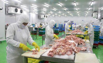 thịt gà xuất khẩu